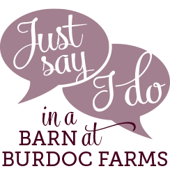 just-say-I-do-in-a-barn-at-burdoc-farms-circle