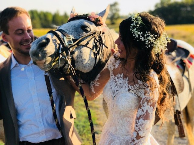 A bride and groom pose with a horse at Burdoc Farms