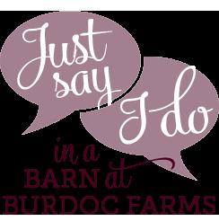 just-say-I-do-in-a-barn-at-burdoc-farms-circle